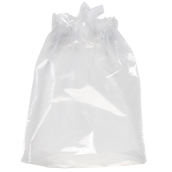Plastic Draw Bag 5 Mil With Poly Draw Tape Closure Photo
