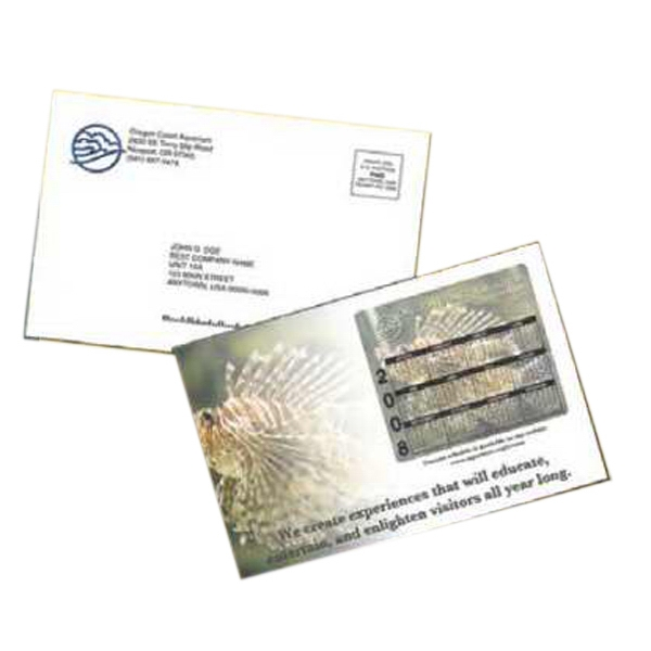 Large Postcard Magnet Flat Package Mailer Photo