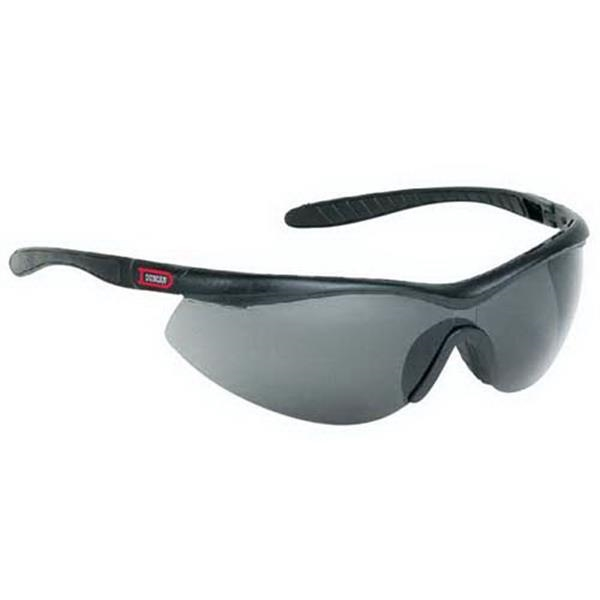 Provizgard - Gray Lens - Single-piece Lens Wrap-around Safety Glasses Photo