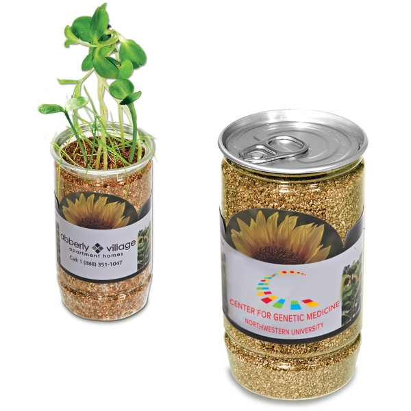 Sunflower-in-a-can - Sunflower Seeds In Natural Vermiculite Photo