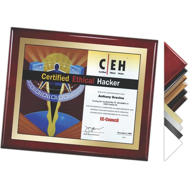 "9"" X 12"" - Plaque Award. Choice Of Digi-color Plate And Board. Affordable Plaques Photo"