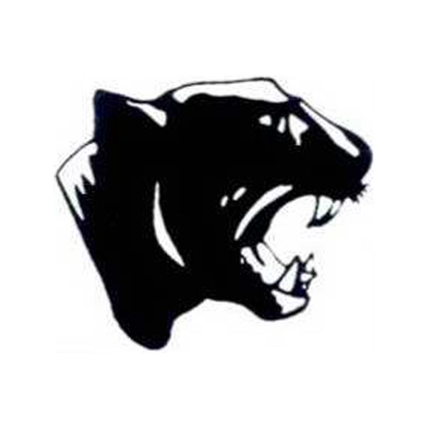 "Temporary Tattoos (tm) - Stock, Non Toxic, Hypoallergenic 2"" X 2"" Panther Head Tattoo Is Fda Certified Photo"