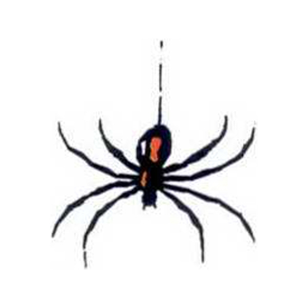 "Temporary Tattoos (tm) - Stock, Non Toxic, Hypoallergenic 2"" X 2"" Spider Tattoo, Fda Certified Photo"