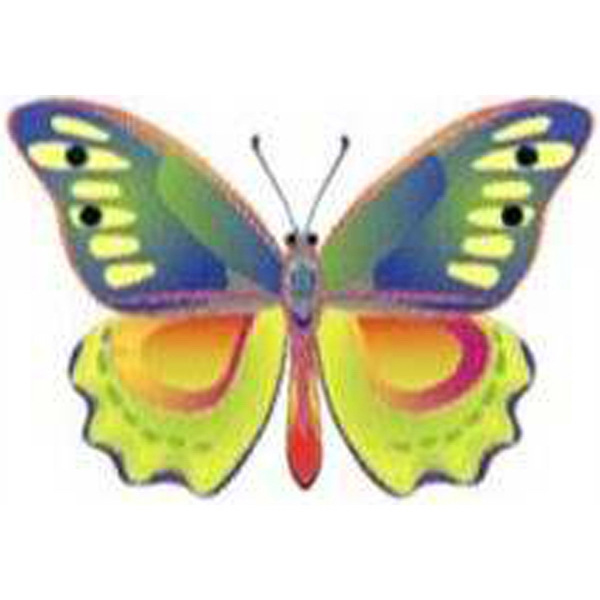 Temporary Tattoos (tm) - Stock, Non Toxic, Hypoallergenic Light Colors Buttefly Tattoo Is Fda Certified Photo