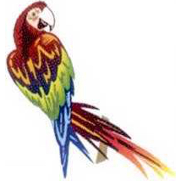 "Temporary Tattoos (tm) - Stock, Non Toxic, Hypoallergenic 2"" X 2"" Parrot Tattoo Is Fda Certified Photo"