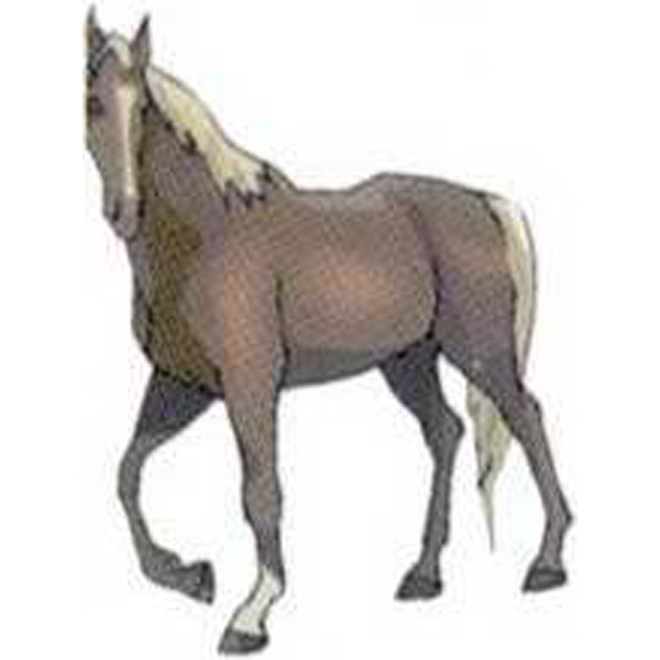 "Temporary Tattoos (tm) - Stock, Non Toxic, Hypoallergenic 2"" X 2"" Horse Tattoo Is Fda Certified Photo"