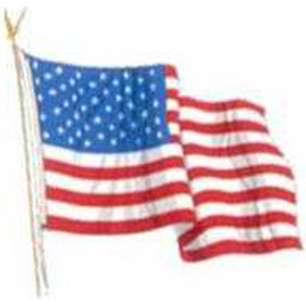 Temporary Tattoos (tm) - Stock, Non Toxic, Hypoallergenic, Waving American Flag Tattoo Is Fda Certified Photo