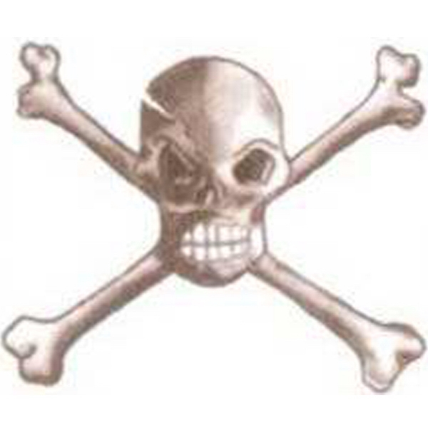 "Temporary Tattoos (tm) - Stock, Non Toxic, Hypoallergenic 2"" X 2"" Skull And Bones Tattoo Is Fda Certified Photo"