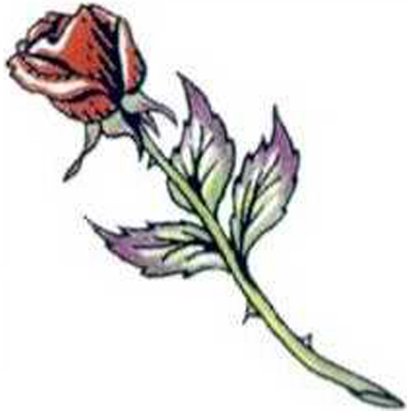 "Temporary Tattoos (tm) - Stock, Non Toxic, Hypoallergenic 2"" X 2"" Long Stem Rose Tattoo Is Fda Certified Photo"