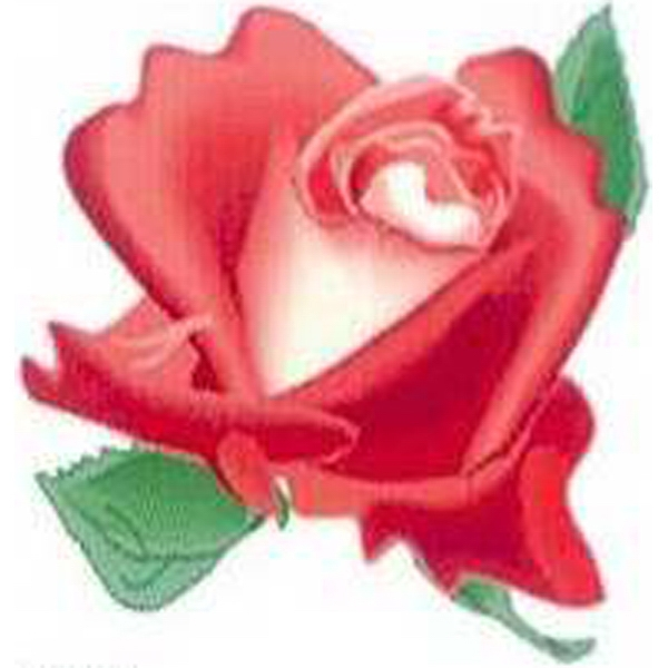 "Temporary Tattoos (tm) - Stock, Non Toxic, Hypoallergenic 2"" X 2"" Red Rose Head Tattoo Is Fda Certified Photo"