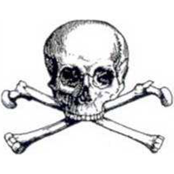 Temporary Tattoos (tm) - Stock, Non Toxic, Hypoallergenic Large Skull And Bones Tattoo Is Fda Certified Photo