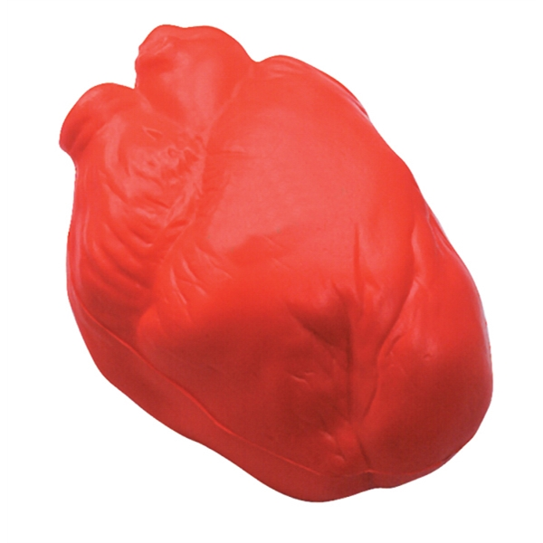 Squeezies (r) - Anatomical Heart Shaped Stress Reliever Photo