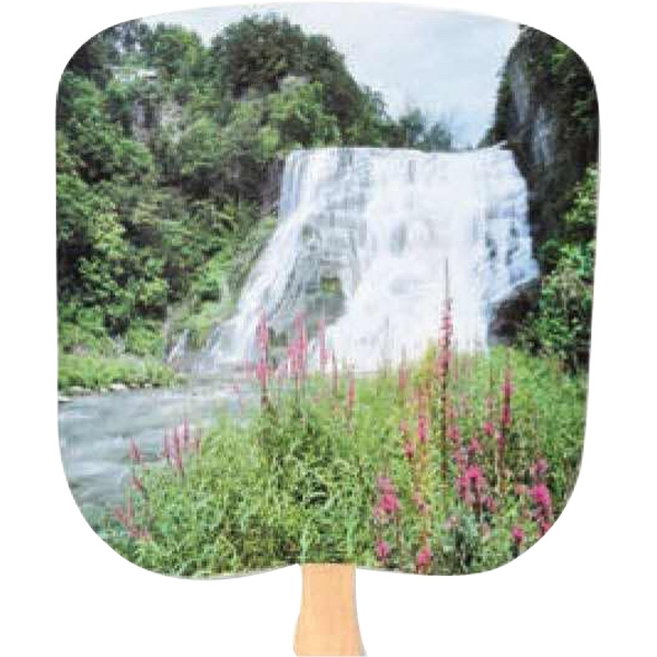 Waterfall - Scenic - Fan With Full Color Stock Picture On Coated Front Photo