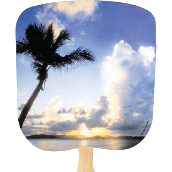 Tropical Sunset - Scenic - Fan With Full Color Stock Picture On Coated Front Photo