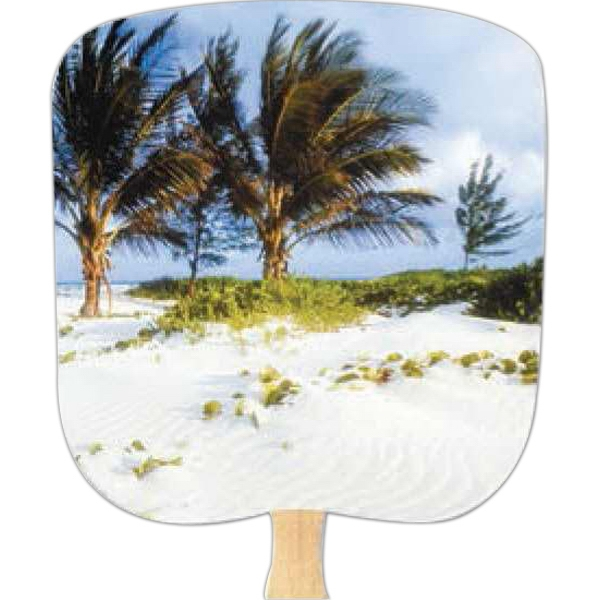 Palms - Scenic - Fan With Full Color Stock Picture On Coated Front Photo