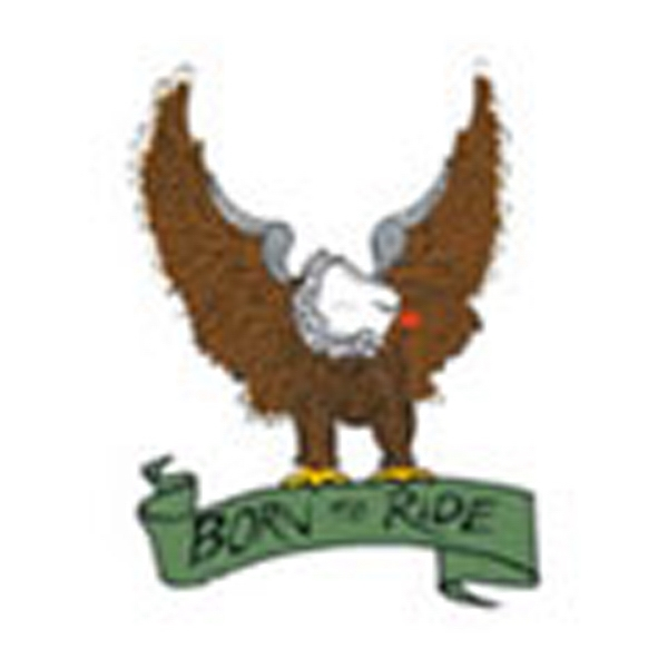Born To Ride, Stock Tattoo Designs Photo