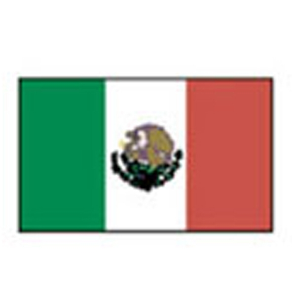 Mexico Flag, Stock Tattoo Designs Photo
