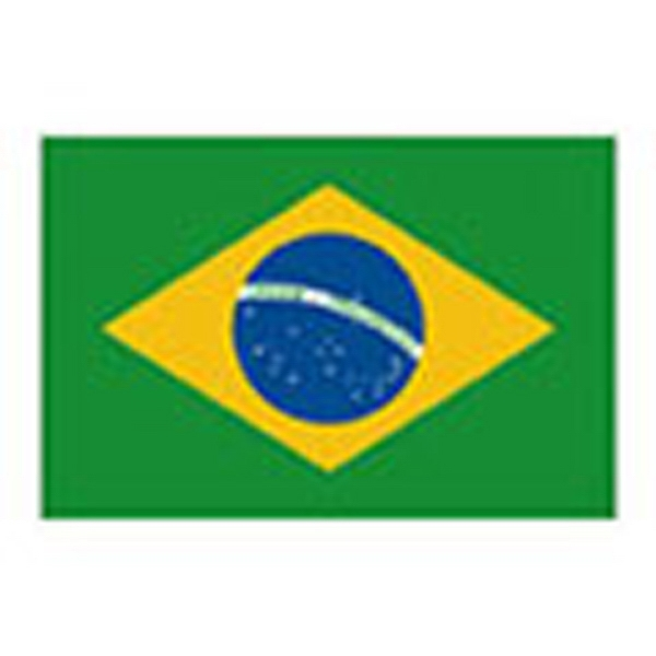 Brazil Flag, Stock Tattoo Designs Photo