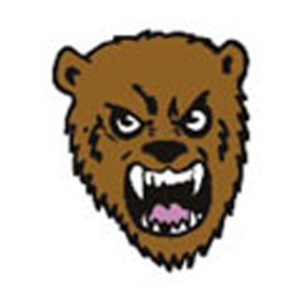 Bear Stock Tattoo Designs Photo