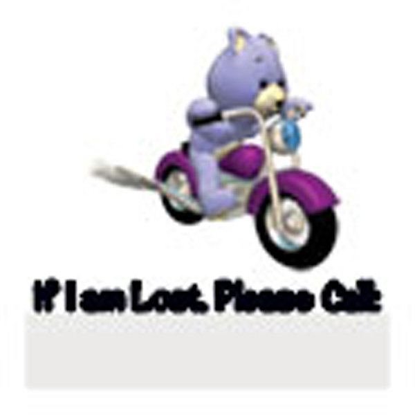 Bear/if I Am Lost Please Call Stock Temporary Tattoo Photo