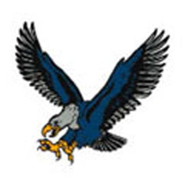 Blue Eagle, Stock Tattoo Designs Photo
