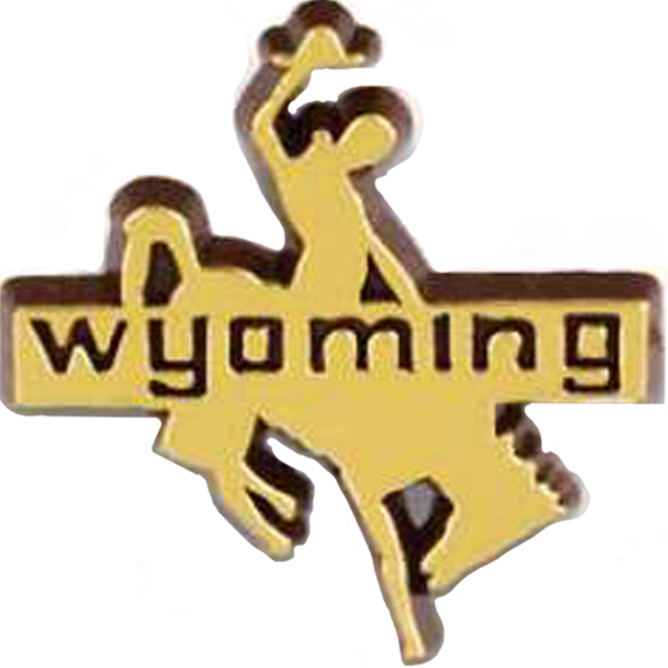 Cowboy On Horse With Wyoming State Stock Design Lapel Pin Photo