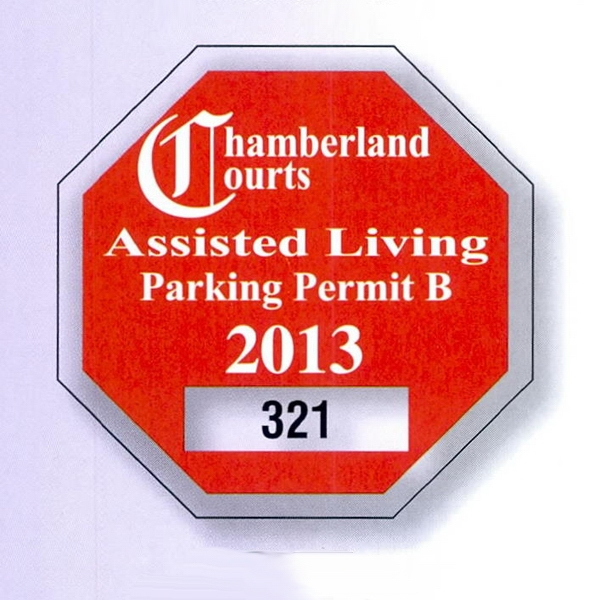 "2 3/4"" X 2 3/4"" Octagon Clear Static Stick Die-cut Parking Permit Photo"