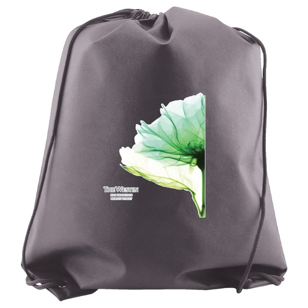 "Enviro Sacks (tm) - Non Woven Polypropylene Cynch Backpack, 16"" X 20"" Photo"
