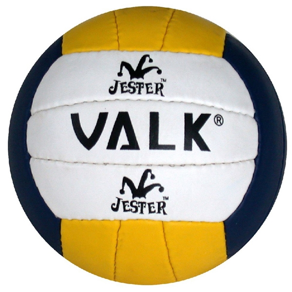 "5.75"" Mini Volleyball With 18 Panels Photo"