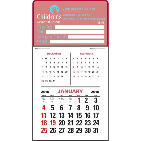 Press-n-stick (tm) - Three Month Graphic Vertical Calendar Pad Photo
