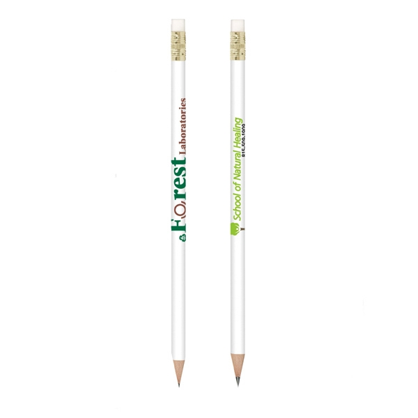 Bic (r) Ecolutions (r) Evolution (r) - Durable 46% Recycled Plastic White Barrel Pencil With White Eraser And Gold Ferrule Photo