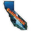 California Magnet