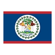 Belize Flag Temporary Tattoo - Flag of Belize Temporary Tattoo