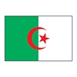 Algeria Flag Temporary Tattoo - Algeria Flag Temporary Tattoo