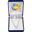 """5.5 Carat Genuine Cubic Zirconia Pendant and Necklace - 18"""", 5.5 carat, cubic zirconia pendant with rhodium-plated necklace in a custom box."""