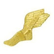 Chenille Pin WINGED TRACK FOOT