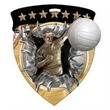 """3"""" Color Shield Medallion VOLLEYBALL (Male)"""