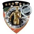 """3"""" Color Shield Medallion TRACK (Male)"""