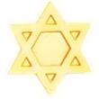 Service Lapel Pin JEWISH STAR