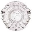 Custom 2 3/4'' Sport Insert Medallion 2 ND PLACE (S)