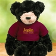 Chelsea (TM) Plush Teddy Bear - Dexter