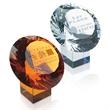Distinction Award