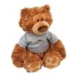 """Gund (R) Pauly Plush Teddy Bear - Stuffed bear, 13.5"""" - sitting size 9.5"""""""