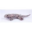 "9"" Printed Lizard - Stuffed 9"" Printed Lizard Plush Toy"