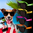 Neon Look Sunglasses - Plastic sunglasses with black frames and neon colored arms.