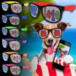 Assorted Custom Neon Billboard Sunglasses - Neon colored billboard sunglasses with full color imprint on both lenses.