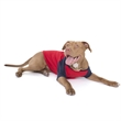 Poly-Cotton 3/4 Sleeve Dog Raglan T-Shirt - 3/4 dog raglan t-shirt.