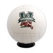 Volleyball - Mini Size Signature - Ships Inflated