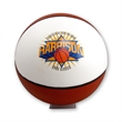 Basketball - Full Size Signature, 1 Panel - Ships Inflated
