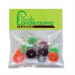 Life Savers® in Sm Header Pack - Life Savers in Small Header Pack